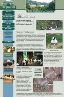 Small Farm Website Design