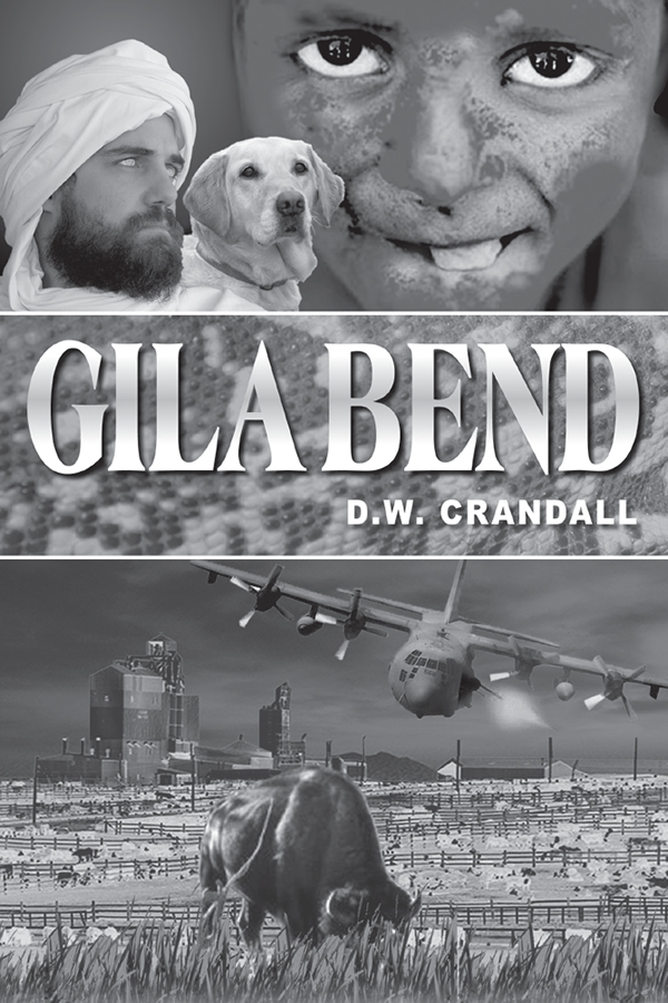 Cover Design for Gila Bend