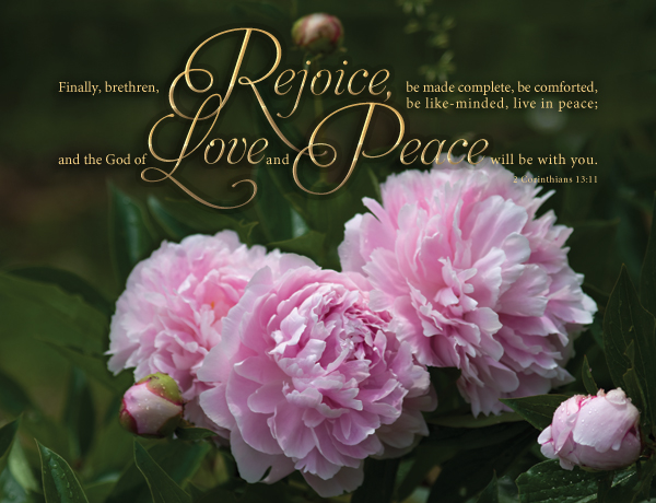 Peonies with Scripture overlay